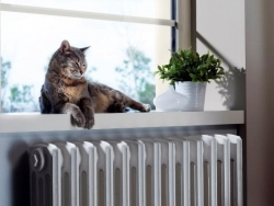renovate central heating